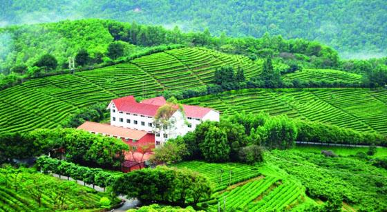 生态农场_生态农业观光度假村规划设计研究
